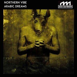 Northern Vibe 歌手頭像