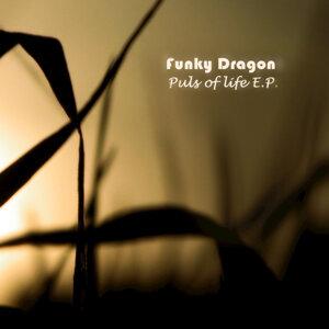 Funky Dragon 歌手頭像