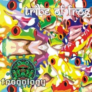 Frogology 歌手頭像