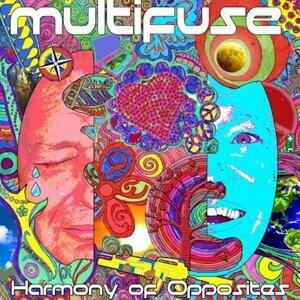 Multifuse