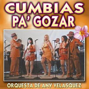 Orquesta de Any Velasquez 歌手頭像
