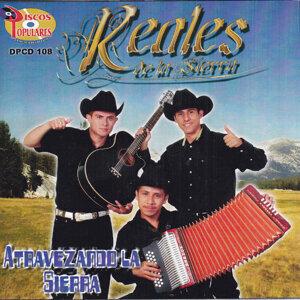 Reales De La Sierra 歌手頭像