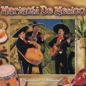 Mariachi De Mexico 歌手頭像