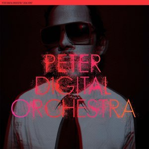 Peter Digital Orchestra 歌手頭像