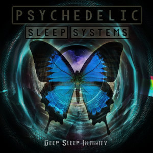 Psychedelic Sleep Systems 歌手頭像