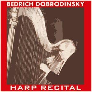 Bedřich Dobrodinský 歌手頭像