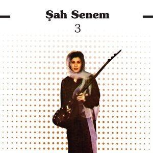 Şah Senem 歌手頭像