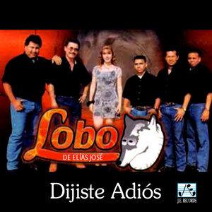 Grupo Lobo De Elías José 歌手頭像