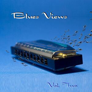 Blues Views 歌手頭像