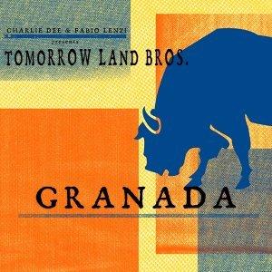 Charlie Dee & Fabio Lenzi, Tomorrow land Bros 歌手頭像