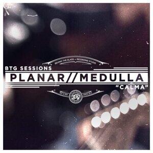 Planar, Medulla 歌手頭像