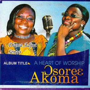 Diana Adjoa Senoo 歌手頭像