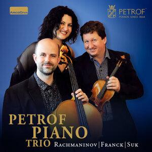 Petrof Piano Trio 歌手頭像