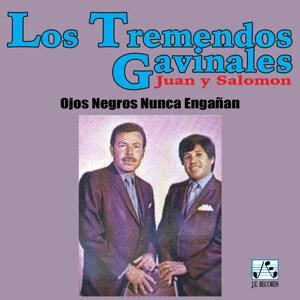 Los Tremendo Gavilanes 歌手頭像