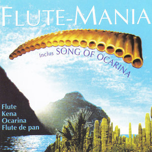 Flute Mania 歌手頭像