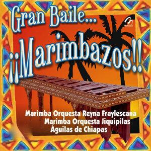 Marimba Orquesta Jiquipilas | Marimba Orquesta Reyna Fraylescana | Águilas De Chiapas 歌手頭像