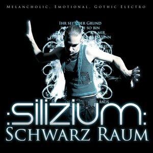 Silizium 歌手頭像
