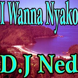 D.J Ned 歌手頭像