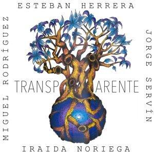 Esteban Herrera Trio 歌手頭像