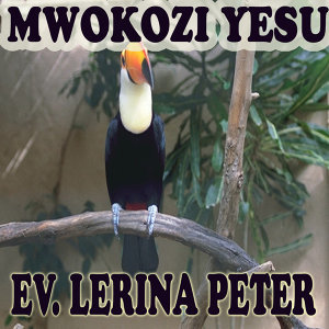 Ev. Lerina Peter 歌手頭像