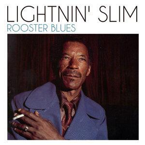 Lightnin' Slim 歌手頭像