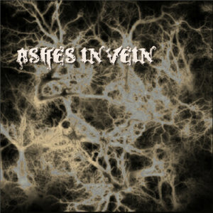Ashes In Vein 歌手頭像