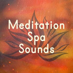 Deep Sleep Specialists|Lullabies for Deep Meditation|Meditation Spa 歌手頭像