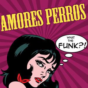 Amores Perros 歌手頭像