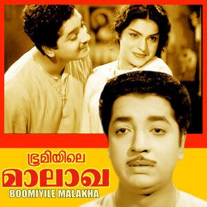 P. S. Divakar, M. A. Majeed, Jaya Vijaya 歌手頭像