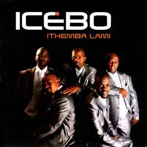 Icebo 歌手頭像