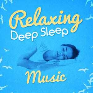 Deep Sleep Relaxation|Deep Sleep Specialists 歌手頭像