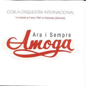 Cobla-Orquestra Internacional 歌手頭像