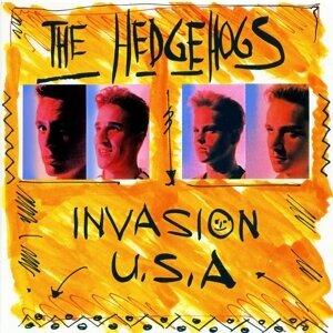 The Hedgehogs 歌手頭像