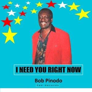 Bob Pinodo 歌手頭像