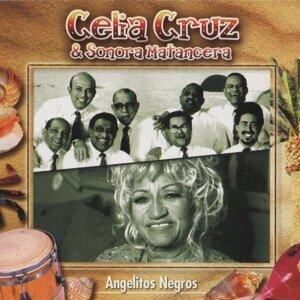 Celia Cruz, Sonora Matancera 歌手頭像