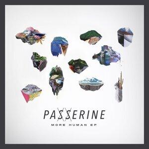 Passerine 歌手頭像