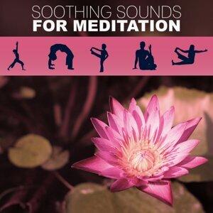 Five Senses Meditation Sanctuary 歌手頭像