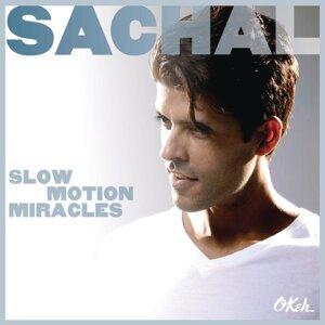 Sachal