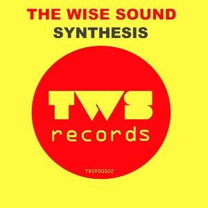 The Wise Sound 歌手頭像