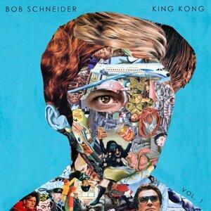 Bob Schneider 歌手頭像