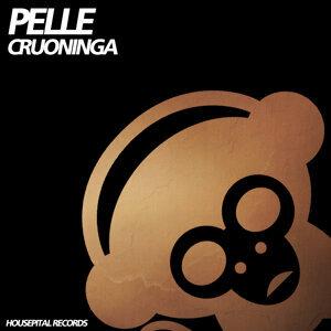 Pelle 歌手頭像