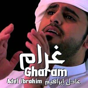 Adel Ibrahim 歌手頭像