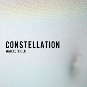 Waterstrider 歌手頭像