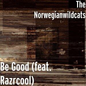 The Norwegianwildcats 歌手頭像