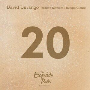 David Durango 歌手頭像