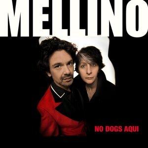 Mellino 歌手頭像