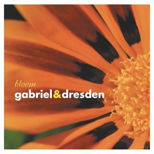 Gabriel & Dresden 歌手頭像
