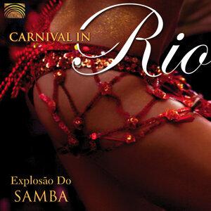 Conjunto Explosão do Samba 歌手頭像
