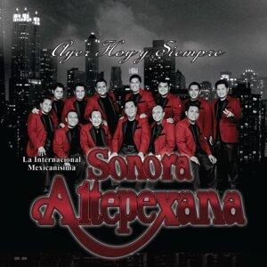 Sonora Altpexana 歌手頭像