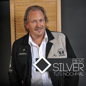 Bert Silver 歌手頭像
